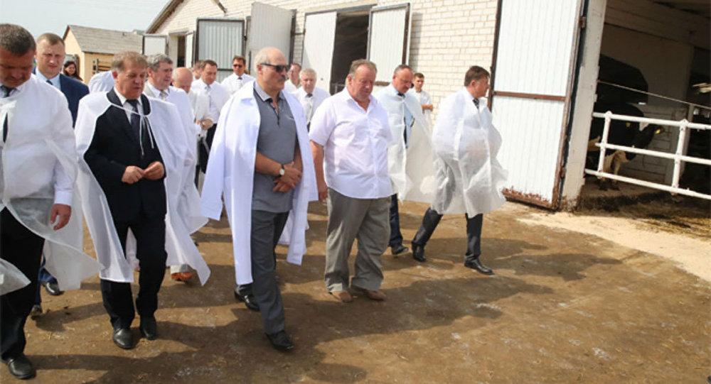 Александр Лукашенко во время рабочей поездки по Брестской области 10.08.2017