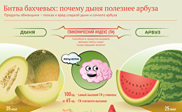 Дыня или арбуз: что полезней? - инфографика на sputnik.by
