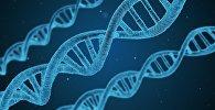 ДНК архивное фото