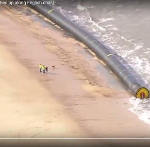 Видеофакт: гигантские трубы вынесло на берег в Великобритании