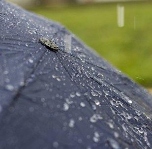 Летні дождж, архіўнае фота