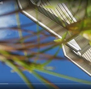 Смартфон записал видео собственного падения из самолета и не разбился