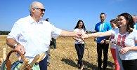 Лукашэнка навучыў журналістаў жаць