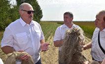 Александр Лукашенко посетил в Оршанском районе предприятие Устье