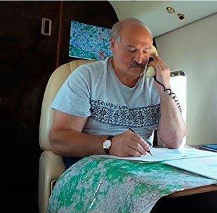 Президент Беларуси Александр Лукашенко, несмотря на выходной день, вновь контролировал ход уборочной кампании с воздуха