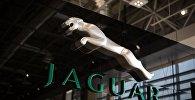 Логотип компании Jaguar