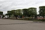 Квадратные деревья на ВДНХ напугали москвичей