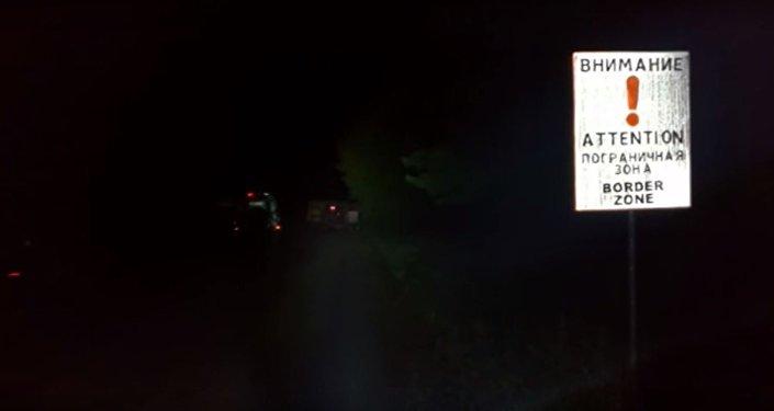 Контрабандист пытался скрыться от гродненских пограничников на дереве, видео
