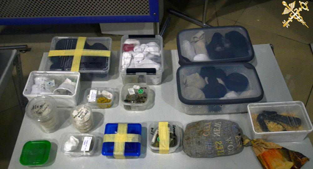 Контрабандный террариум обнаружили в Национальном аэропорту Минск