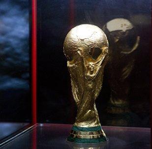 Кубок ЧМ-2018 по футболу представили в Красноярске