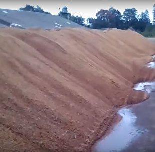 Факт бесхозяйственности на Вилейском комбикормовом заводе