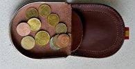 Монетница с белорусскими деньгами