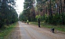 В Беловежской пуще ищут 10-летнего Максима Мархалюка