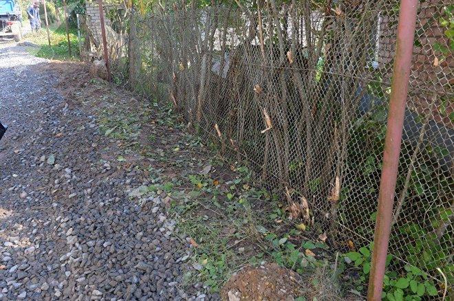 Кусты сирени срубили по распоряжению сельсовета в целях безопасности