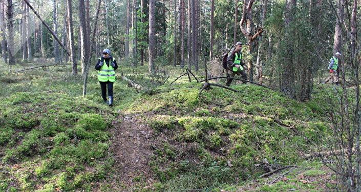 В лесах много оврагов, упавших деревьев