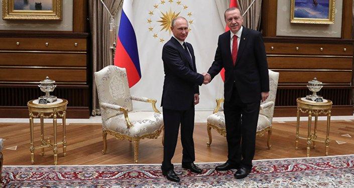 Визит президента РФ В. Путина в Турцию