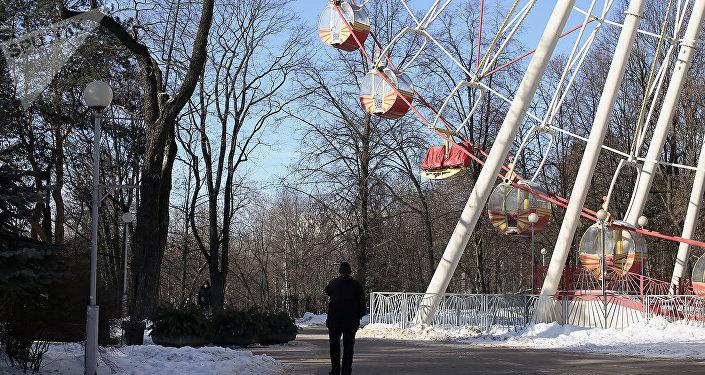 Центральный детский парк имени М. Горького ,колесо обозрения
