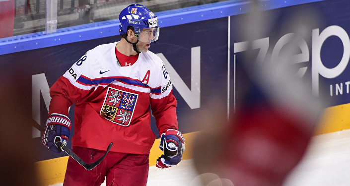Чешский хоккеист Яромир Ягр архивное