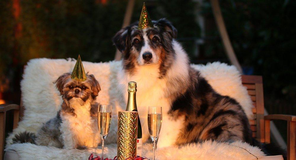 Готовя подарки к новому году решение