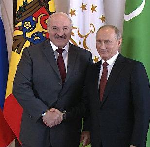 Лукашенко и Путин встретились в Сочи