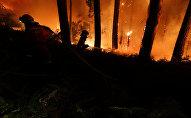 Борьба с лесными пожарами в Португалии