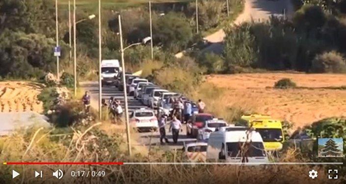 СМИ проинформировали о многотысячной демонстрации впамять убитой журналистки наМальте