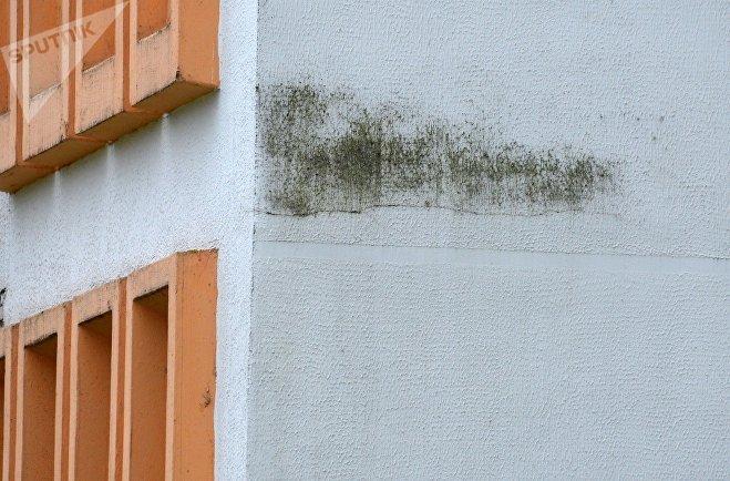 Спустя некоторое время после проведенных работ стены дома потемнели