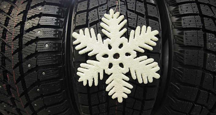 Зимняя резина в магазине по продаже шин