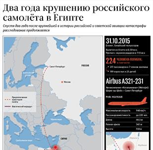 Два года крушению российского самолета в Египте – инфографика на sputnik.by