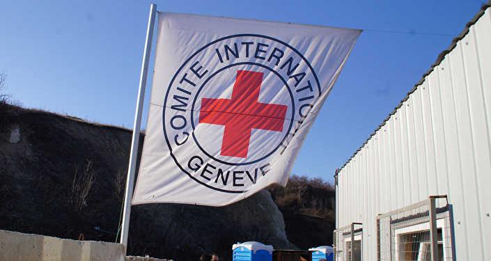 Беларусь продолжит поддерживать работу Красного Креста— Лукашенко