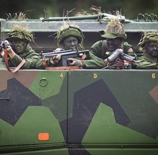 Военные в Швеции