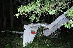 Упавший под Браславом самолет