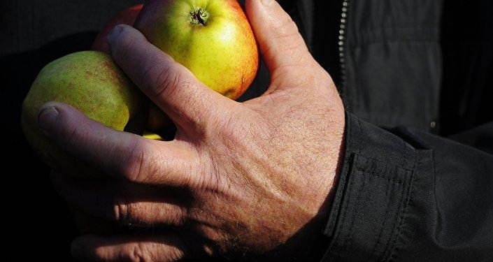 Фермер с яблоками