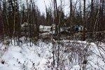 Крушение самолета L-410 в Хабаровском крае, фото с места событий