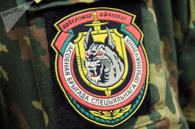 Рысь - символ войсковой части 3214