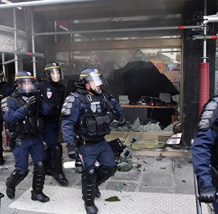 Полиция разогнала демонстрантов в Париже, фото с места событий