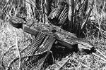 Крест на могиле, архивное фото