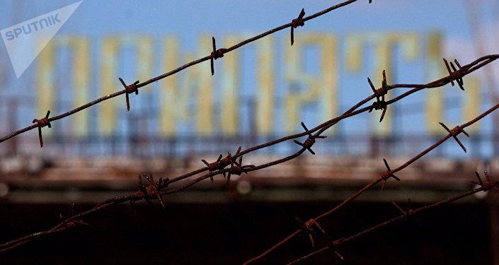 Житель Белоруссии: ВЧернобыльской зоне умер сталкер